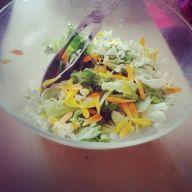 Salada de Calêndulas e Saramagos