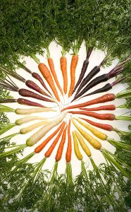 Cenouras - Propriedades Terapêuticas
