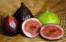 Figos Propriedades e Indicações Terapêuticas